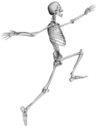Skippy Bones - When you think of health care, think of us